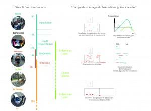 Le plan possible pour l'observation et la réalisation du film : les rythmes quotidiens de la place.
